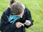 Vermessen eines Austernfischer-Eis / Measuring Oystercatcher egg
