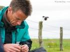Bruterfolgsmonitoring / Monitoring of breeding success