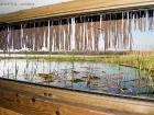 Beobachtungsversteck mit Wasserspiegel auf Augenhöhe / Hide on water-level
