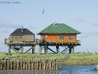 Vogelwärterhütten / Bird-warden huts